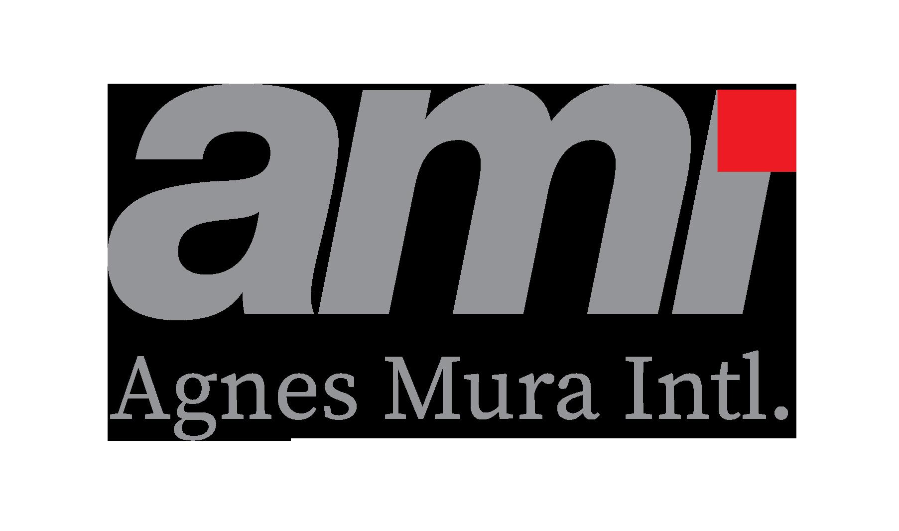 AMI-INTERNATIONAL